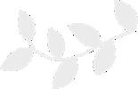 LEAF(horizontal)