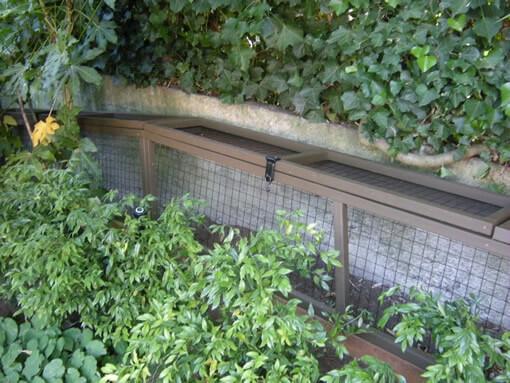 atio-cat-enclosure-catwalk-tunnel-cat-walking-ground-catiospaces