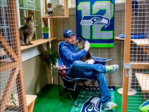 catio-cat-enclosure-Seahawks-interior-matt-catiospaces