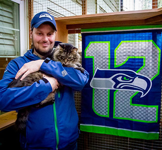 catio-cat-enclosure-cat-guardian-seahawks-catiospaces