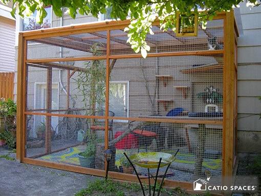 Catio Amp Cat Enclosure Photo Gallery Catio Spaces