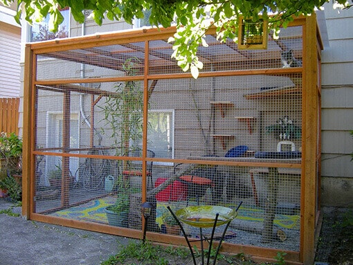catio cat enclosure sanctuary bandit catio spaces