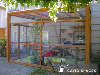catio-cat-enclosure-exterior-bandit-catiospaces