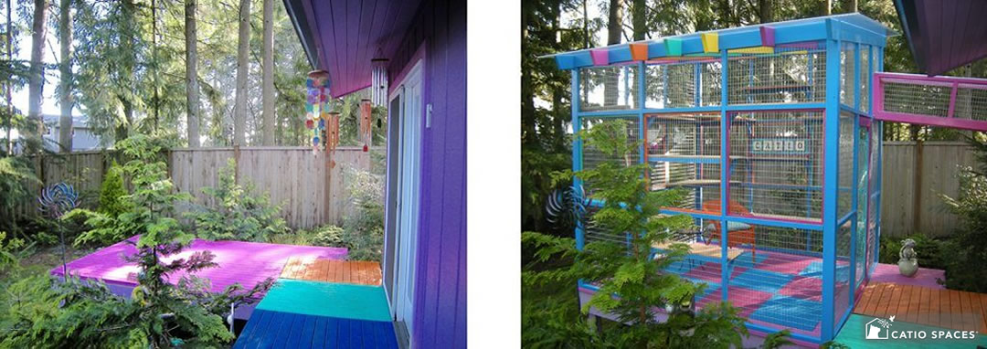 catio-cat-enclosure-exterior-colorful-catiospaces