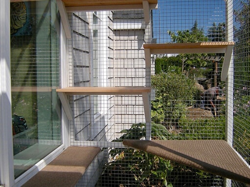 catio-cat-enclosure-shelves-catiospaces