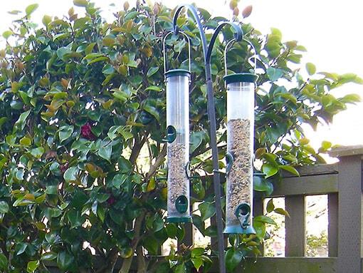 catio-cat-enclosure-view-bird-feeder-catiospaces