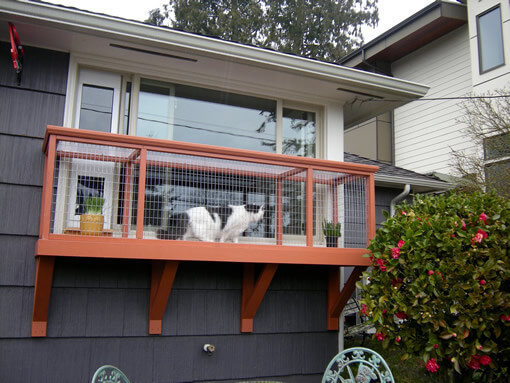 catio-cat-enclosure-window-box-cat-catnip-bjorklund-after-catiospaces