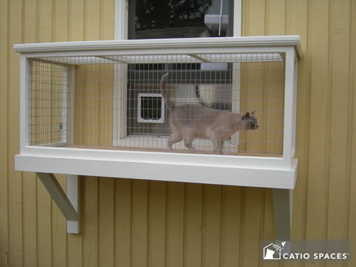 Diy Catio Plans Catio Spaces