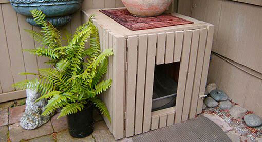 catio tip reduce cat odor