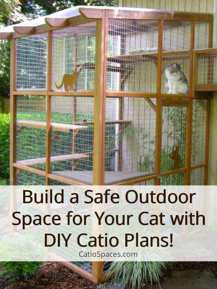 It's easy to build a catio with DIY Plans