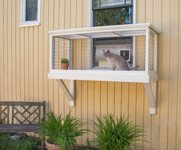 Window Box Type Catio with Window Access