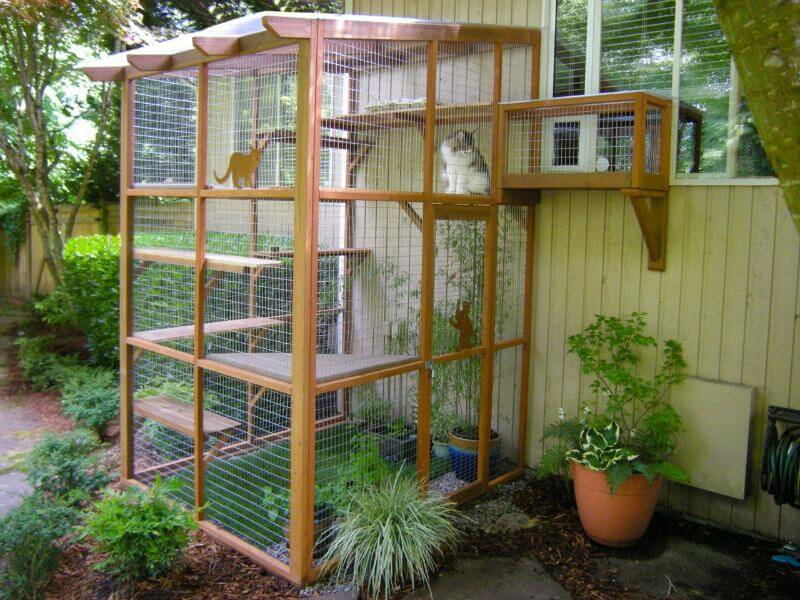 It S Easy To Build A Diy Catio For Your Cat Catio Spaces