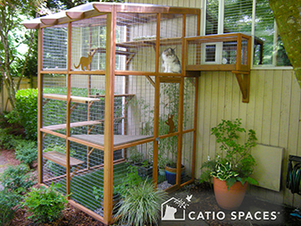 catio cat enclosure black sanctuary exterior catiopspaces