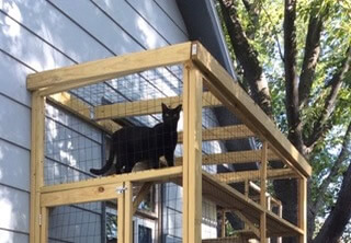 haven-catio-diy2