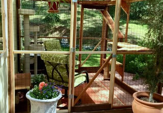 sanctuary-catio-diy