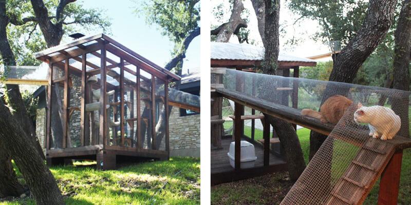 Catio Tour Austin Texas