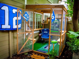 Catio Cat Enclosure Seahawks Exterior Catiospaces