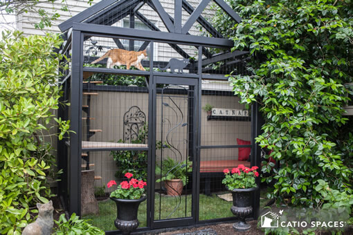 catio cat enclosure gable cat walking catiospaces
