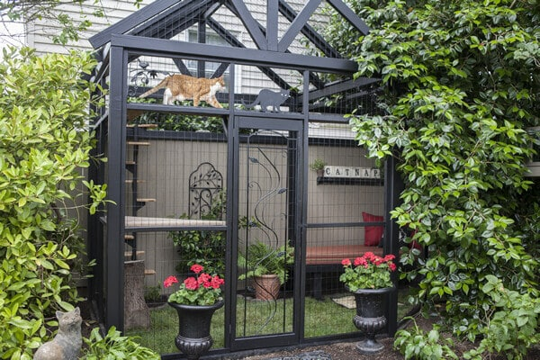 Catio Spaces Garden Catio