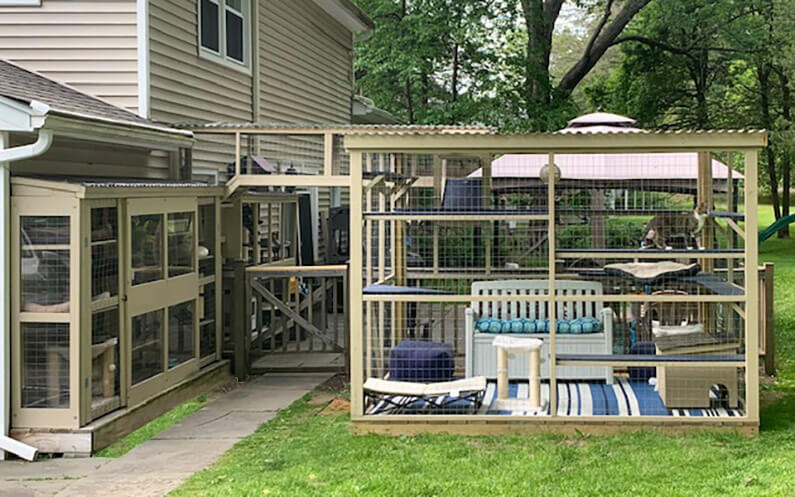 Cat Enclosures Catiospaces Catio Window Box Oasis