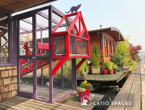 CH in Seattle: Special Kitties and Their Unique Houseboat Catio