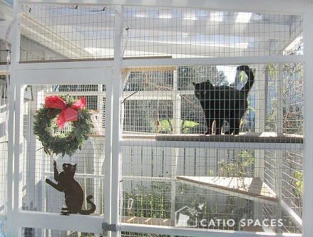 Catio Cat Enclosure Holiday Wreath Catiospaces[601]