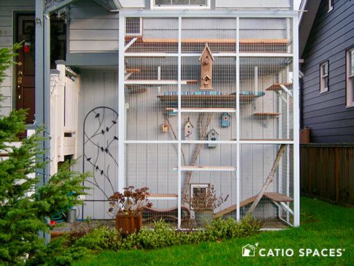 Catio Cat Enclosure Birdhouse Theme Catiospaces 510 Wm
