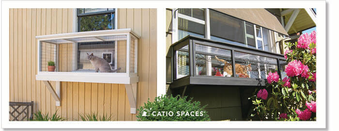Catiospaces Diy Catio Plans Windowbox