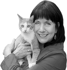 Cynthia Chomos Catiospaces Cat Enclosures 240
