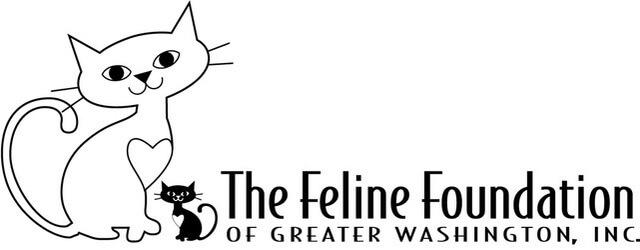 Feline Foundation
