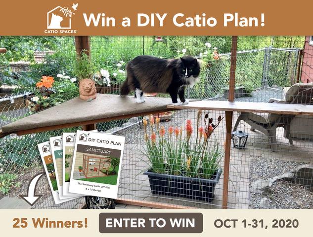 Giveaway Diy Catiospaces.com Oct20 Fb