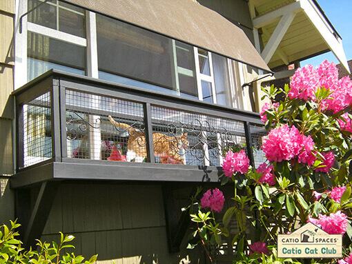 Serena Catio Cat Enclosure Window Box Club Catiospaces
