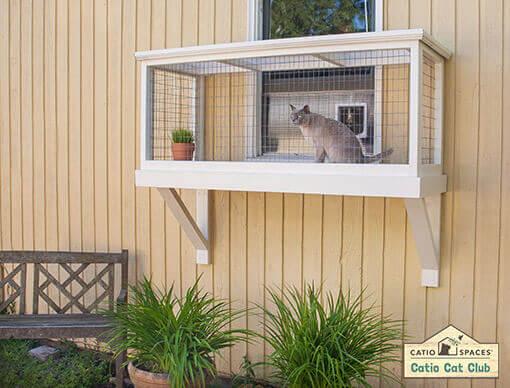 Smudgie Catio Cat Enclosure Window Box Club Catiospaces