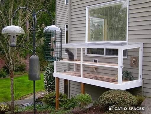 bird-safe Catio window box