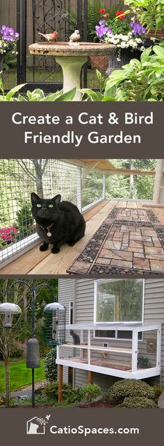 Whether your outdoor garden areas are large or small, with a little planning it's easy to enhance them to protect both pets and wildlife. #catio #catenclosure #catpatio #diycatio #diycatenclosure #diycatpatio #buildacatio #buildcatenclosure #buildcatpatio #catwindowperch #catprojects #catwindowbox #catenrichment #catdiyprojects #cat #garden #birds #birdfriendlygarden