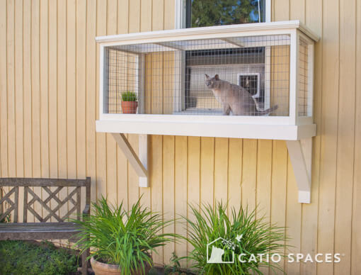 Catio Window Box