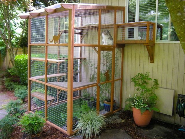 Catio Cat Enclosure Haven Tunnel Catiospaces