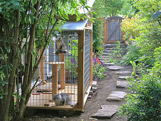 320 Catios Cat Enclosures Catio Tour Seattle Directory West Seattle