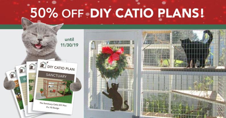 catio diy catio plan cat enclosure Sanctuary 8x10 catiospaces