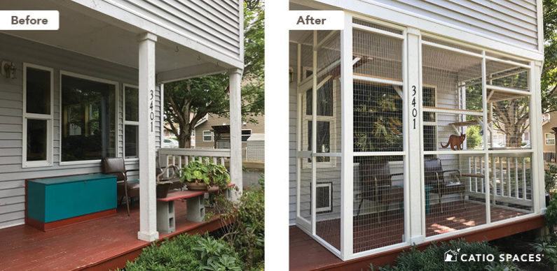 Catio Cat Enclosure Before After Davis Covered Deck Porch