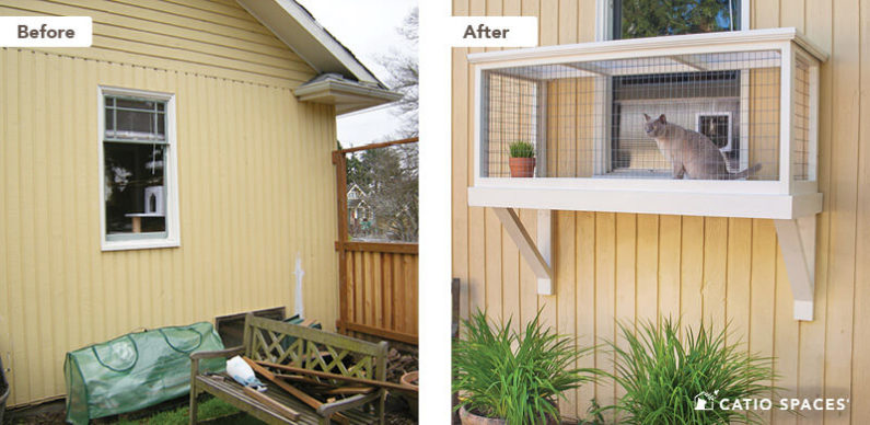 Catio Cat Enclosure Before After Earley Window