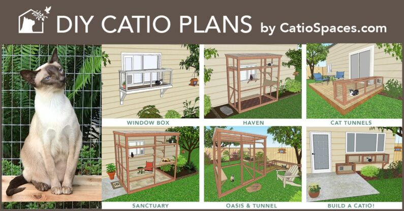 DIY-Catio-Plans