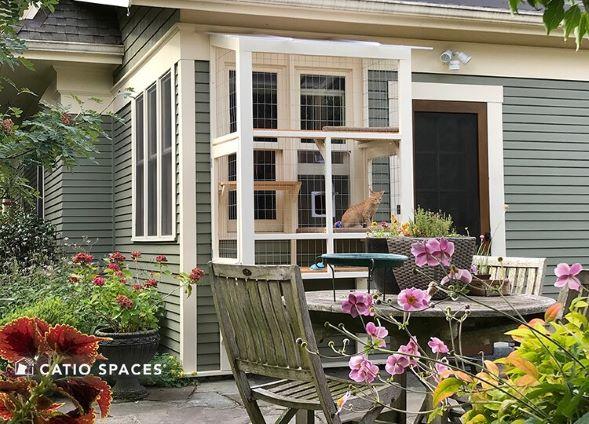 Catio Cat Enclosure Window Condo Exterior Janey Wm Catiospaces 1