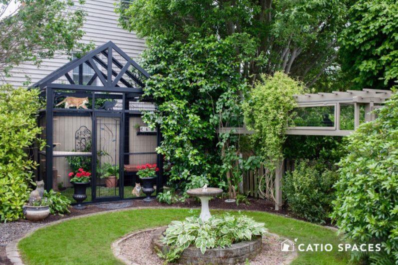 Catio Cat Enclosure Gable Catio Birdbath Catiospaces