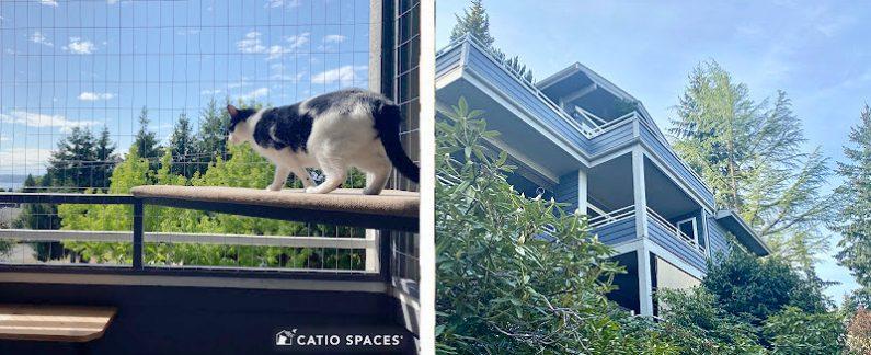 Catio Deck Enclosure 2up Exterior Max Shelf Catiospaces (2)